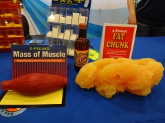 1 lb muscle vs 1 lb fat